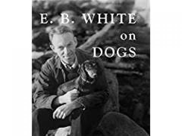 essays of eb white themes Read eb white free essay and over 88,000 other research documents eb white leading american essayist and literary stylist of his time, eb white transformed his life experiences into unforgettable satire and.