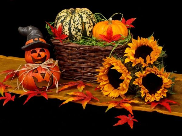 Rockville Halloween Events That are Family Friendly