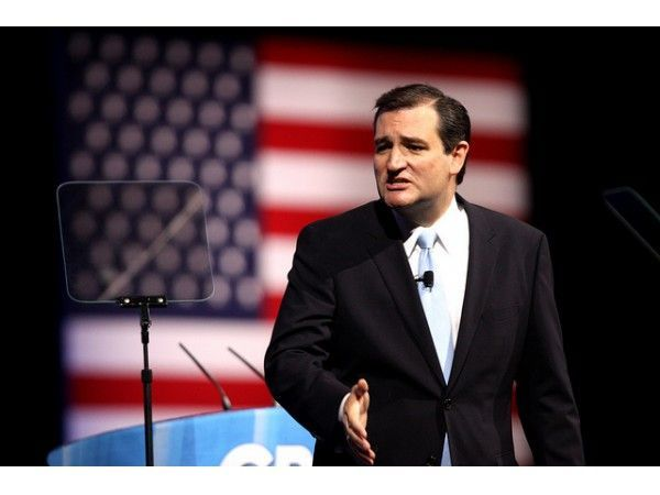 Is Ted Cruz being considered for attorney general?