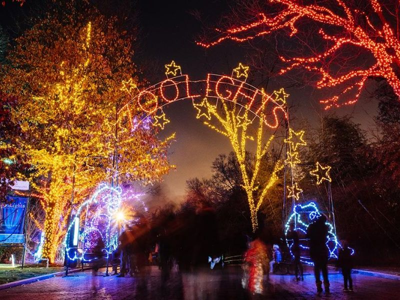 The National Zoo Is About To Light Up Big Time