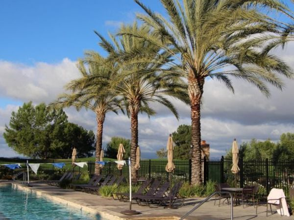 City Of Newport Beach Swim Lessons