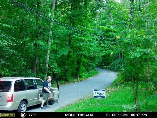 Stealing Political Signs a Crime: Manassas City Police
