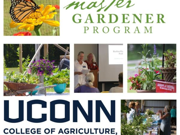 Uconn Master Gardener Program Now Accepting Applications For 2017 Ridgefield Ct Patch