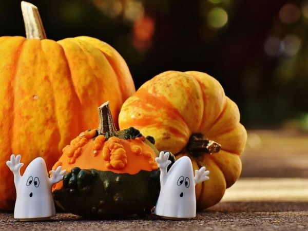 CAL FIRE Offers 2016 Halloween Safety Tips