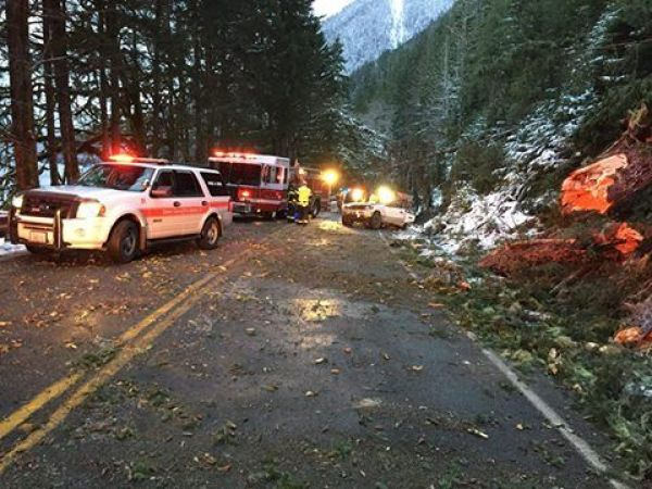 Child killed when tree falls on auto in Clallam County