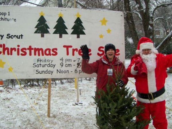 Christmas Trees Natick