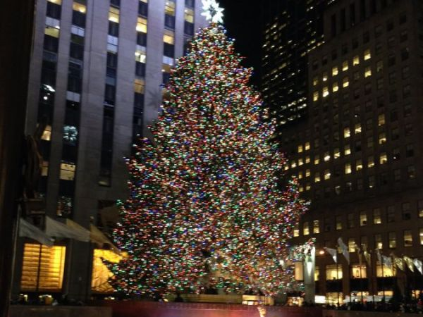 Spruce from New York will star as Rockefeller Christmas tree