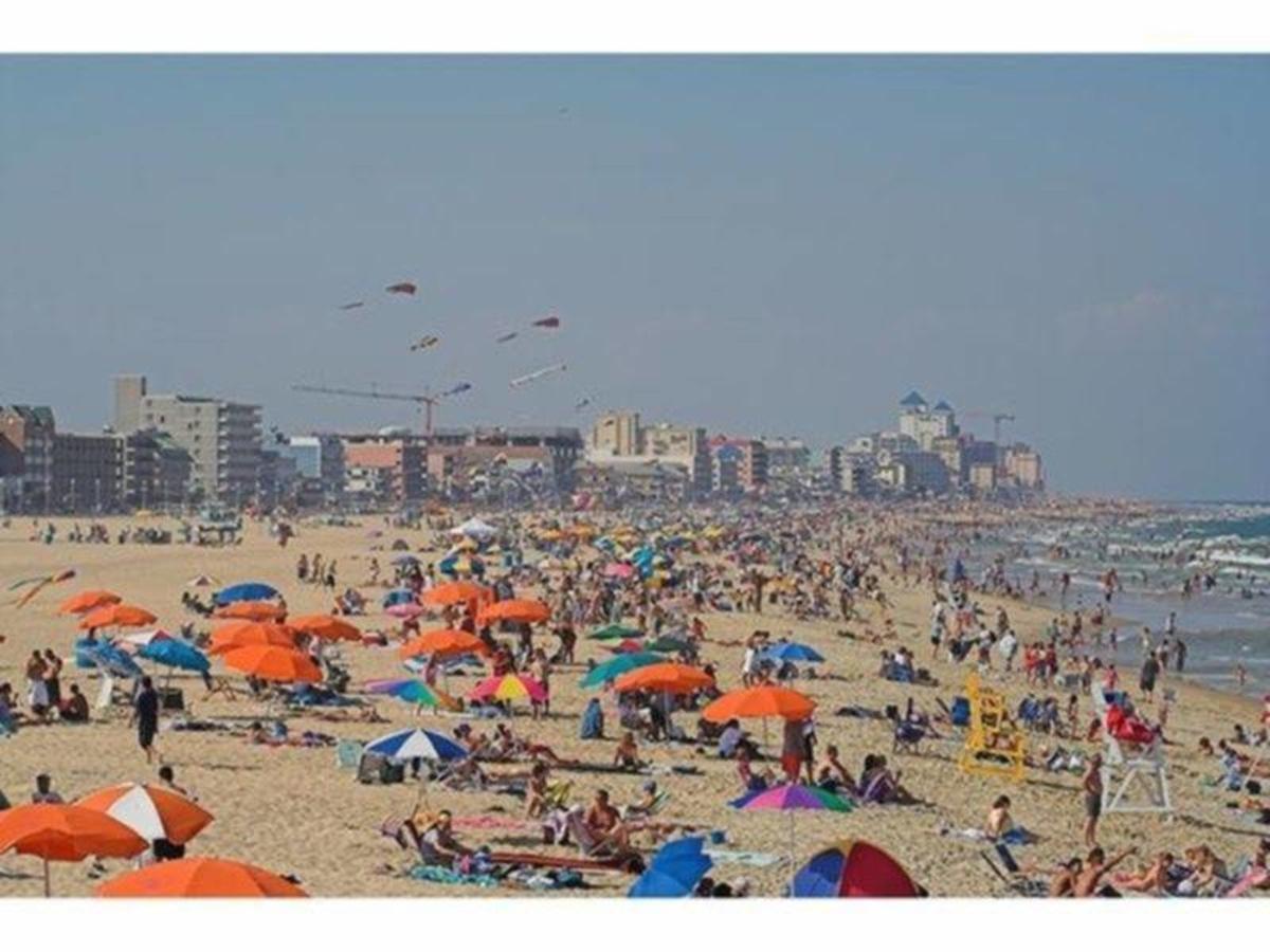 Sea Lice Outbreak Makes Ocean City Beach-Goers Miserable