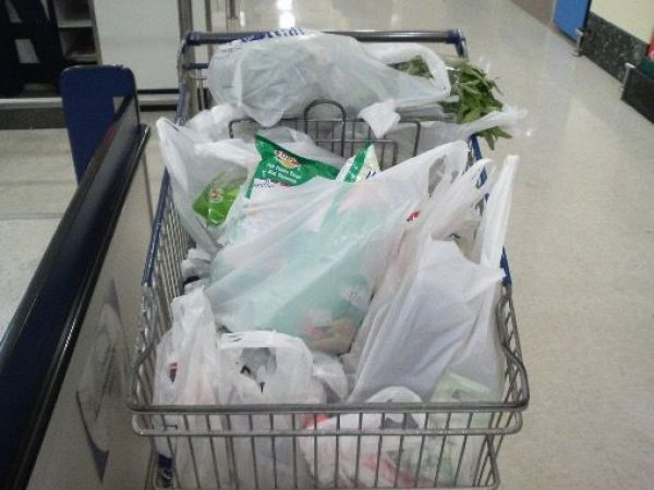 How to Survive and Thrive Under California's New Plastic Bag Ban