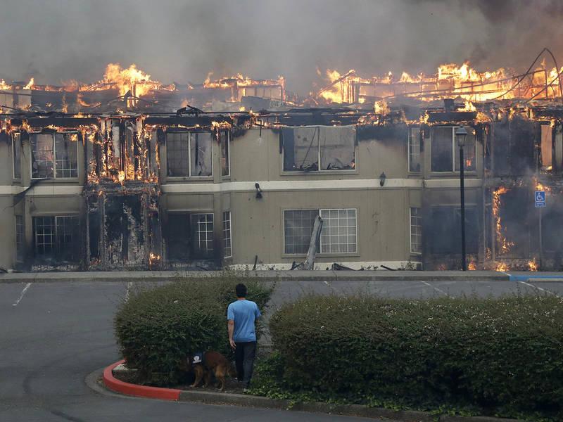 11 dead as fires devastate sonoma napa counties healdsburg ca patch