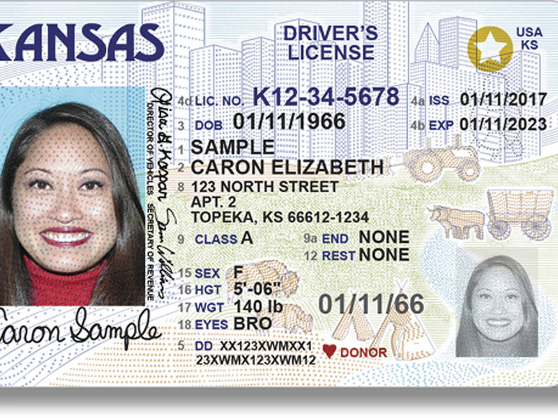 Domestic Air Travel Driver S License