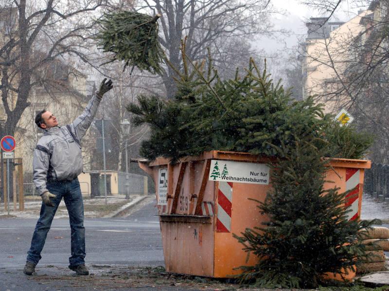 Houston Christmas Tree Recycling