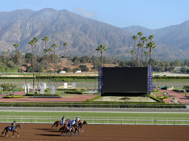 3 Race Horses Euthanized After Santa Anita Race Track