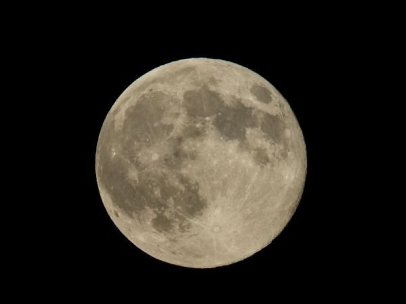 Last Chance To See Pink Full Moon