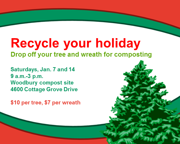 Recycle Your Christmas Tree In Woodbury Woodbury Mn Patch