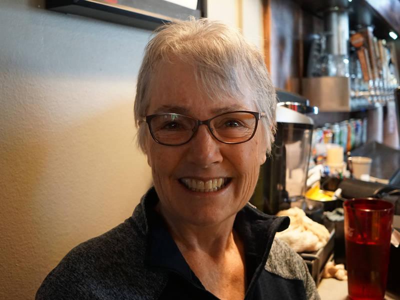 Democrat Tracy Freese Is Running Against Sen Bill Dix R