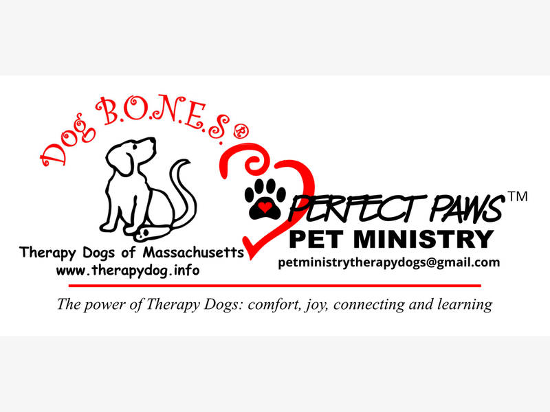 Flipboard Therapy Dog Certification Workshop Scheduled Starting Sat