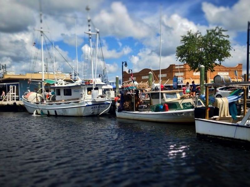 New Restaurants In Tarpon Springs Fl