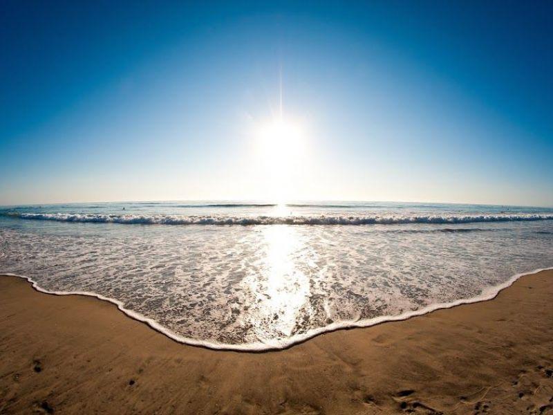 4 Pinellas County Beaches Fail Bacterial Testing  Pinellas Beaches, Fl Patch-8725