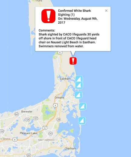 Eastham Cape Cod Map: Shark Sighting At Cape Cod Beach: Swimmers Flee