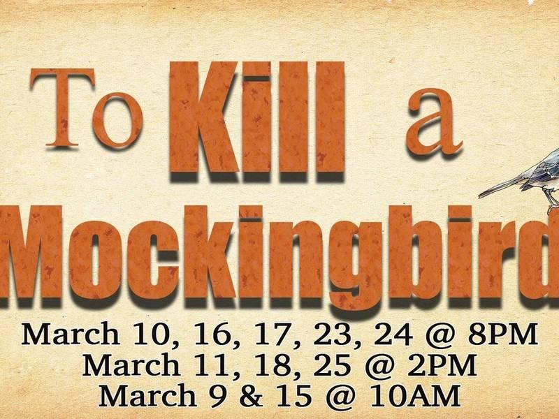 to kill a mockingbird 11 15