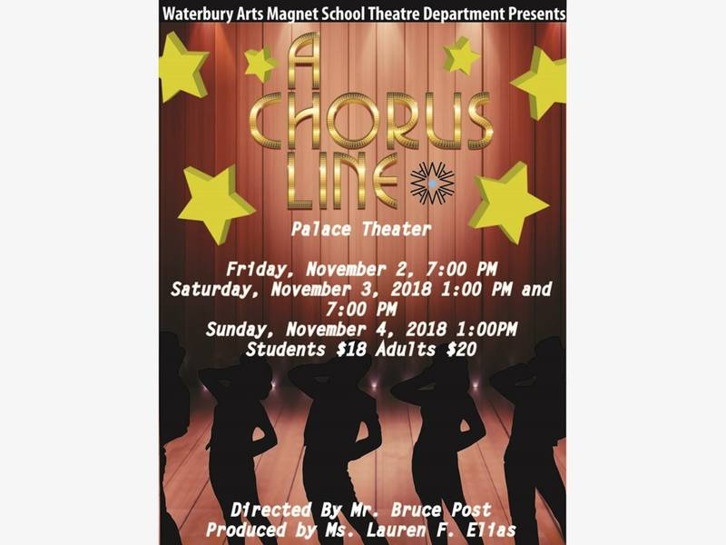 WAMS to Present 'A Chorus Line' at Palace Theater