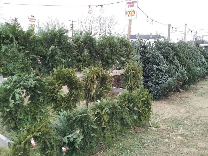 1; St. Mary School, Milford, Christmas Tree and Wreath Sale! | Milford