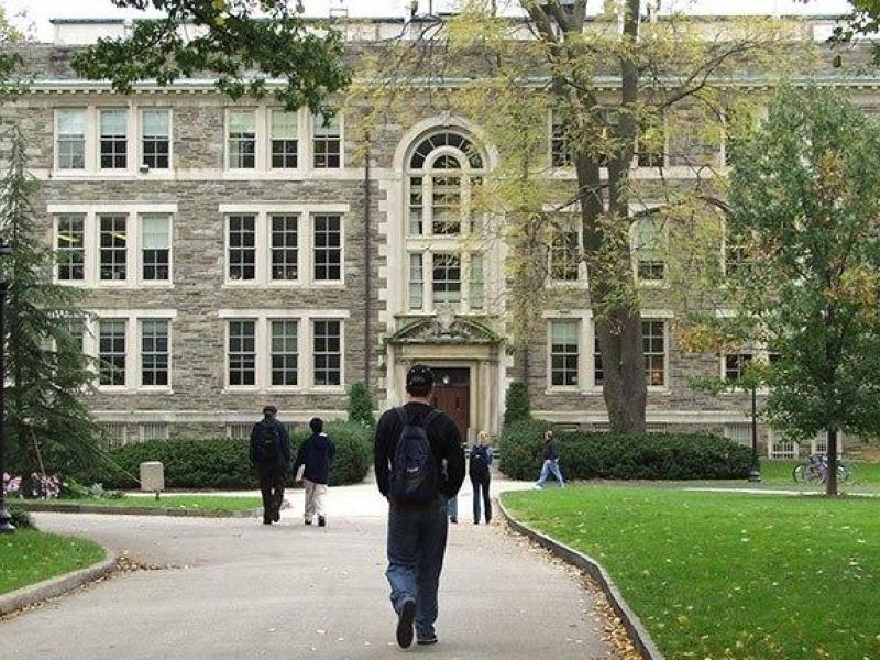 Haverton college