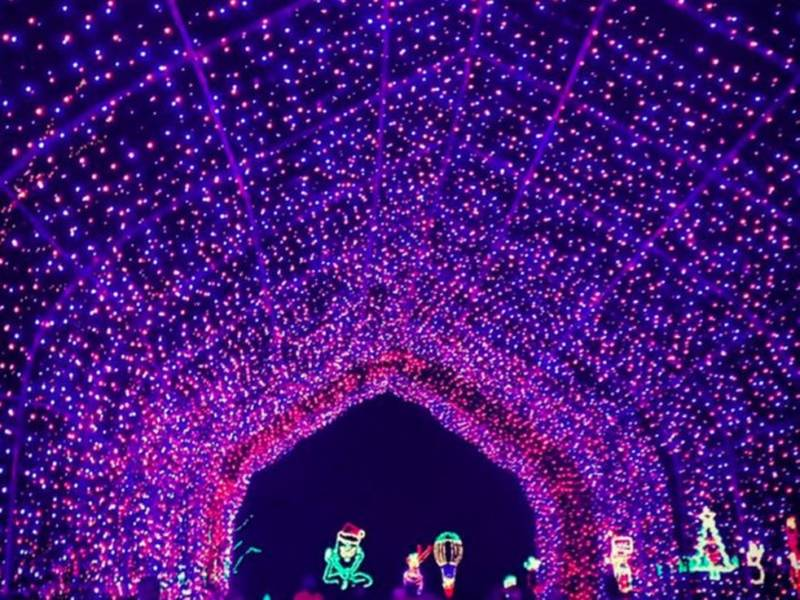 Shady Brook Farm's 2018 Holiday Light Show Opens Nov. - Shady Brook Farm's 2018 Holiday Light Show Opens Nov. 17 Newtown