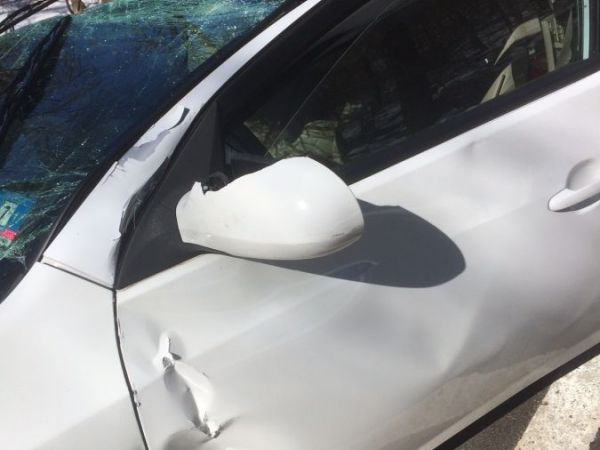100 Foot Tree Falls On Car Mahwah Critically Injures