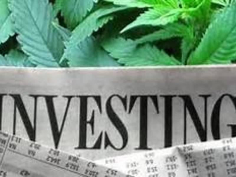 Marijuana Stocks Growing Like A Weed Los Alamitos Ca Patch