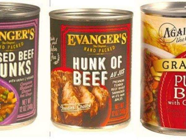 Dog food recall expanded after euthanasia drug sickens pets