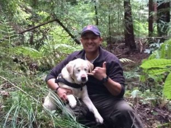 Blind family dog missing for a week found alive in California mountains