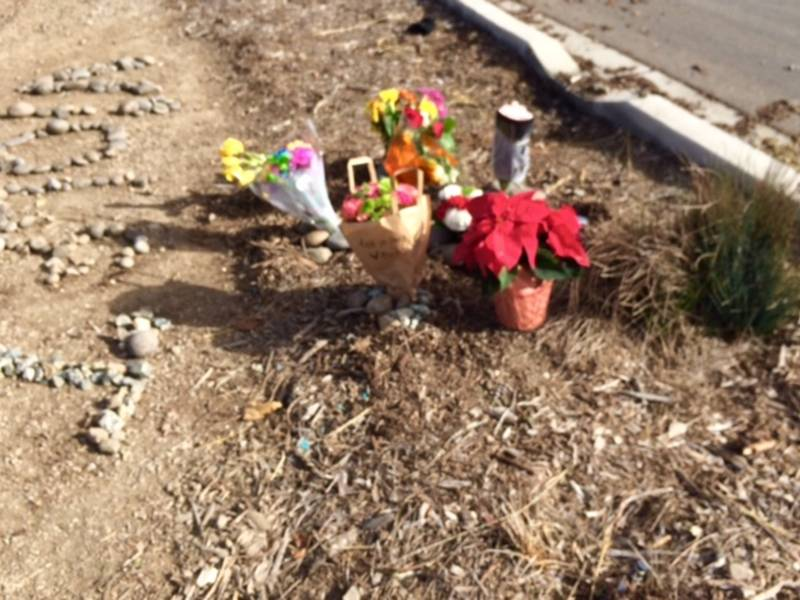 Alameda Patch Car Crash