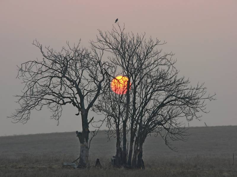 Smoky Sunset: Livermore's Photo Of The Week