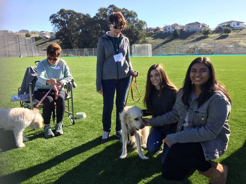 Therapy Dogs Visit Students at Quarry Lane