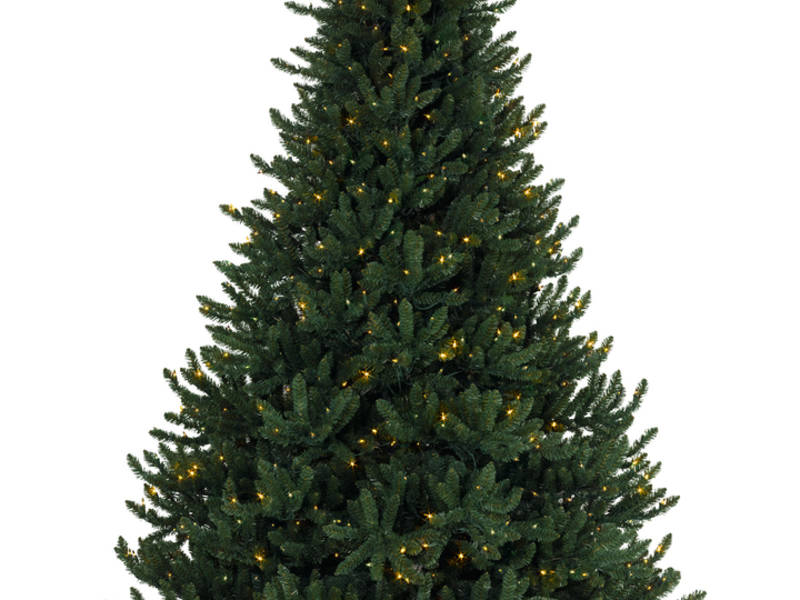 Troop 428 John Wilkinson Memorial Christmas Tree Pick-Up - Troop 428 John Wilkinson Memorial Christmas Tree Pick-Up Branford