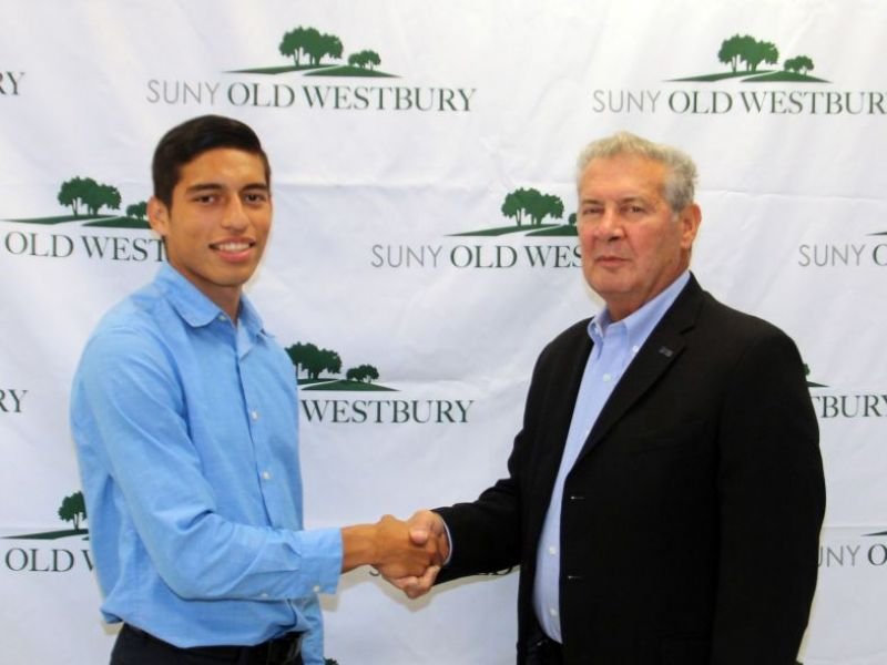 Old westbury admissions essay