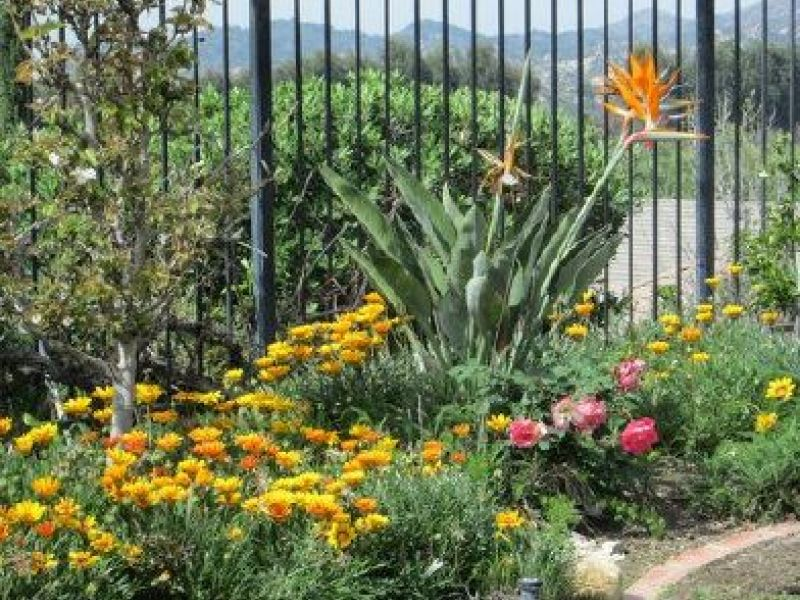Kiwanis discuss Garden Club on Friday | Lake Forest, CA Patch