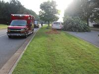 Woman Injured When SUV Crashes Into Tree In Canton-1
