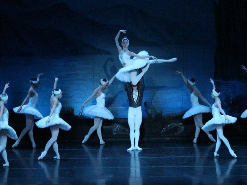 Image result for swan lake russian ballet college of dupage
