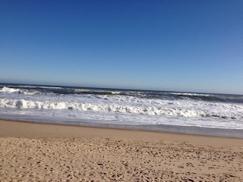 Which Hampton Beaches Scored Best East