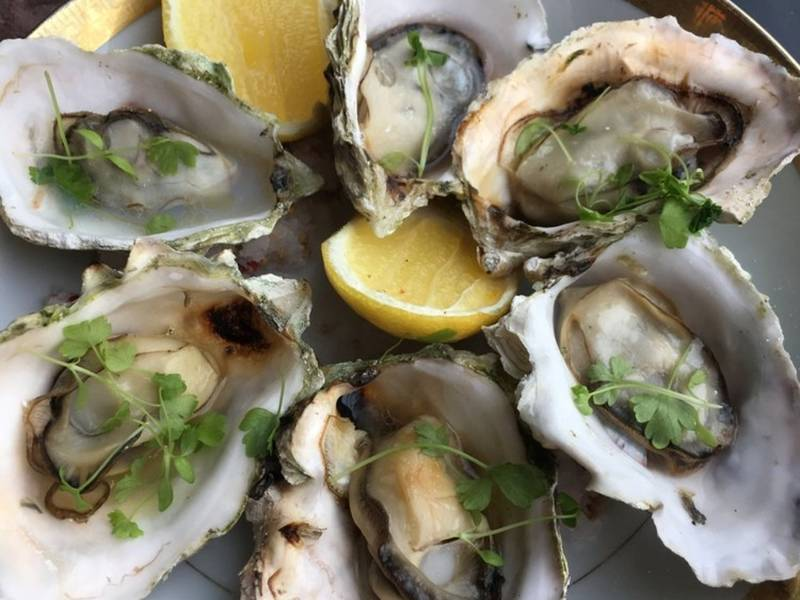 4 New Restaurant Openings In North Jersey