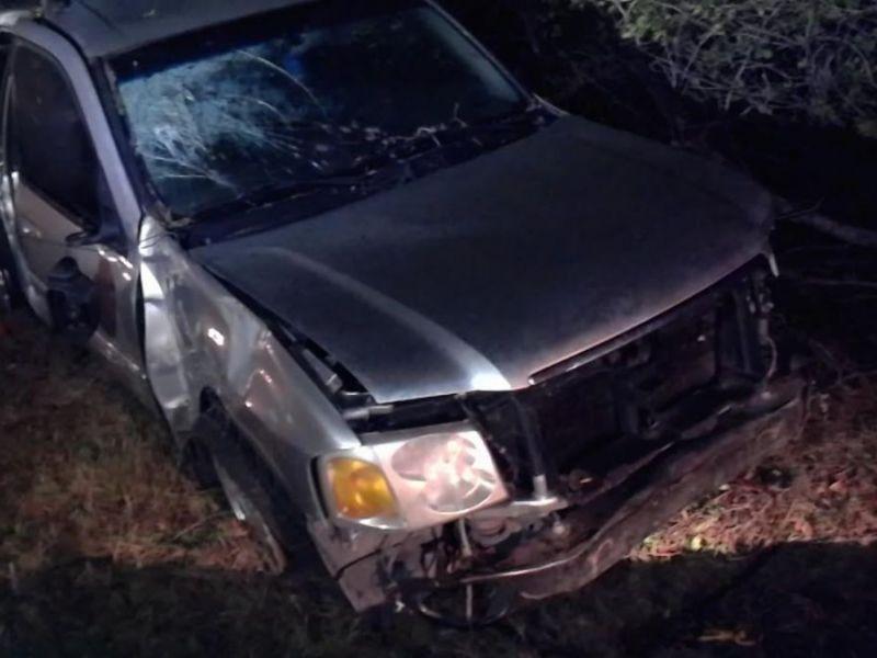 Driver hides in woods after fatal crash in hillsborough co for Hillsborough county motor vehicle registration