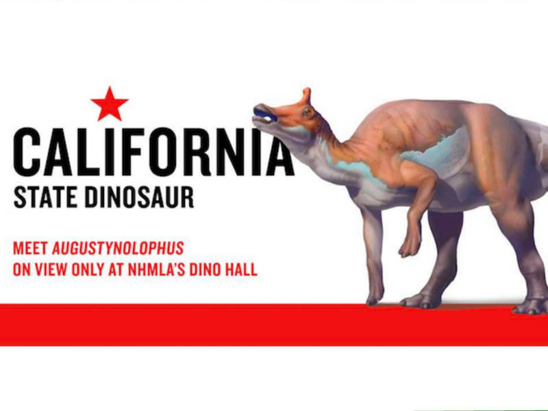 Meet Auggie California S Official State Dinosaur At