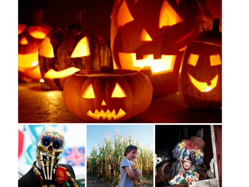 sf bay area halloween haunts corn mazes more 2018 guide