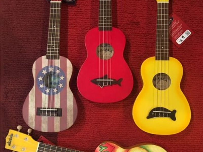 Learn To Play The Ukulele At Mike Risko Music School