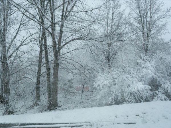 Winter Storm Expecting to Drop 5 to 12 Inches of Snow