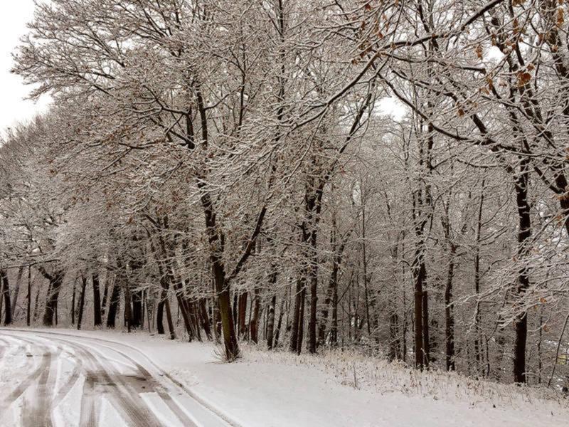 Connecticut Weather: Snow Accumulation Estimates Rise ...