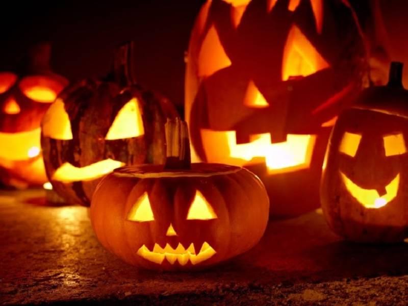 Flashlight Halloween Haunt Set For Painter Park Playground In West ...